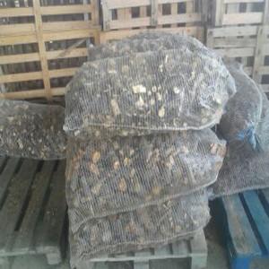 Prodej dřeva na topení olomouc