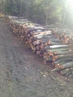 Palivové dřevo Komorní Lhotka, dřevo na topení Komorní Lhotka, štípané dřevo Komorní Lhotka