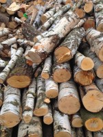 Palivové dřevo :  Slatina, dřevo na topení Slatina, štípané dřevo Slatina
