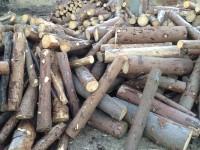 Palivové dřevo :  Kamenná, dřevo na topení Kamenná, štípané dřevo Kamenná