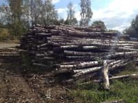 Palivové dřevo :  Třeština, dřevo na topení Třeština, štípané dřevo Třeština