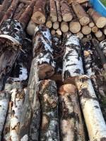Palivé dřevo  Újezd, dřevo na topení Újezd, štípané dřevo Újezd