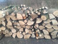 Palivové dřevo nový jičín