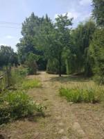 Prodej zahrady 307 m2, Dobroměřice