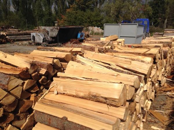 1216-stipy-mekke-drevo.JPG