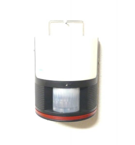 3691-P1030780.jpg