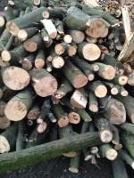 Palivové dřevo Jeseník, Dřevo na topení jeseník, Krbové dřevo Jeseník
