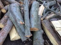 Palivové dřevo, štípané dřevo, dřevo na topení -  Andělská Hora, Bílčice, Bohušov, Brantice, Bruntál, Břidličná, Býkov - Láryšov, Čáková, Dětřichov nad Bystřicí, Dívčí Hrad