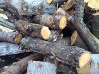 Palivové dřevo Andělská Hora, dřevo na topení Andělská Hora, štípané dřevo Andělská Hora