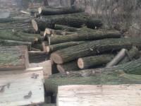 Palivové dřevo Hlinka, dřevo na topení Hlinka, štípané dřevo Hlinka.