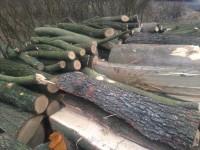 Palivové dřevo Holčovice, dřevo na topení Holčovice, štípané dřevo Holčovice.