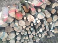 Palivové dřevo Horní Benešov, dřevo na topení Horní Benešov, štípané dřevo Horní Benešov.