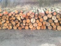 Palivové dřevo Hošťálkovy, dřevo na topení Hošťálkovy, štípané dřevo Hošťálkovy.
