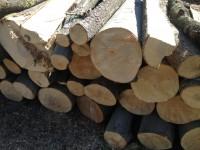 Palivové dřevo Tvrdkov, dřevo na topení Tvrdkov, štípané dřevo Tvrdkov.