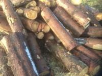 Palivové dřevo Staré Město, dřevo na topení Staré Město, štípané dřevo Staré Město