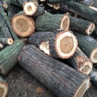 Palivové dřevo Čermná ve Slezsku, dřevo na topení Čermná ve Slezsku, štípané dřevo Čermná ve Slezsku.