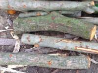 Palivové dřevo Chuchelná, dřevo na topení Chuchelná, štípané dřevo Chuchelná.
