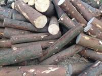 Palivové dřevo Hlavnice, dřevo na topení Hlavnice, štípané dřevo Hlavnice.