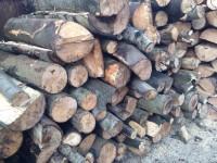 Palivové dřevo Dolní Životice, dřevo na topení Dolní Životice, štípané dřevo Dolní Životice.