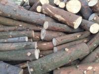 Palivové dřevo Litultovice, dřevo na topení Litultovice , štípané dřevo Litultovice.
