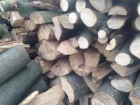 Palivové dřevo Služovice, dřevo na topení Služovice, štípané dřevo Služovice