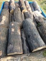 Palivové dřevo Pustá Polom, dřevo na topení Pustá Polom, štípané dřevo Pustá Polom.
