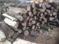 Palivové dřevo Uhlířov, dřevo na topení Uhlířov, štípané dřevo Uhlířov.