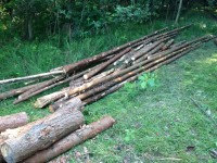 Palivové dřevo Svatoňovice, dřevo na topení Svatoňovice, štípané dřevo Svatoňovice.