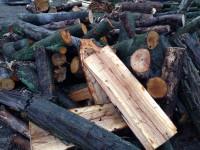 Palivové dřevo Dobrá, dřevo na topení Dobrá, štípané dřevo Dobrá.