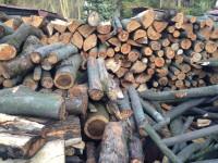 Palivové dřevo Čeladná, dřevo na topení Čeladná, štípané dřevo Čeladná.