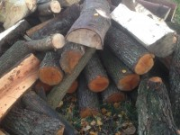 Palivové dřevo Závada, dřevo na topení Závada, štípané dřevo Závada.