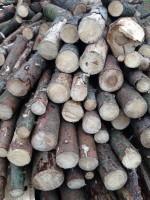 Palivové dřevo Jablunkov, dřevo na topení Jablunkov, štípané dřevo Jablunkov