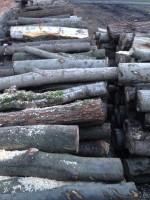 Palivové dřevo Frýdek-Místek, dřevo na topení Frýdek-Místek, štípané dřevo Frýdek-Místek