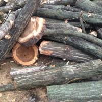 Palivové dřevo Mosty u Jablunkova, dřevo na topení Mosty u Jablunkova, štípané dřevo Mosty u Jablunkova
