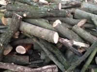Palivové dřevo Morávka, dřevo na topení Morávka, štípané dřevo Morávka