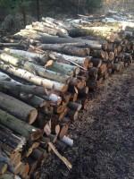 Palivové dřevo Krásná, dřevo na topení Krásná, štípané dřevo Krásná