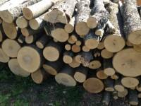 Palivové dřevo Kozlovice, dřevo na topení Kozlovice, štípané dřevo Kozlovice