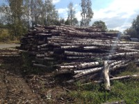 Palivové dřevo :  Dolní Lutyně, dřevo na topení Dolní Lutyně, štípané dřevo Dolní Lutyně