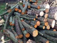 Palivové dřevo :  Vřesina, dřevo na topení Vřesina, štípané dřevo Vřesina