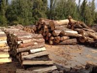 Palivové dřevo :  Olbramice, dřevo na topení Olbramice, štípané dřevo Olbramice