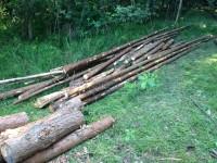 Palivové dřevo :  Horní Lhota, dřevo na topení Horní Lhota, štípané dřevo Horní Lhota