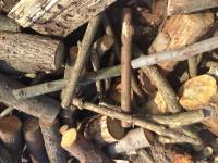 Palivové dřevo :  Velké Albrechtice, dřevo na topení Velké Albrechtice, štípané dřevo Velké Albrechtice