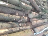 Palivové dřevo :  Starý Jičín, dřevo na topení Starý Jičín, štípané dřevo Starý Jičín