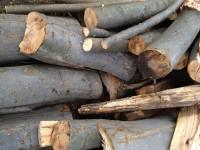Palivové dřevo :  Příbor, dřevo na topení Příbor, štípané dřevo Příbor