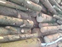 Palivové dřevo :  Odry, dřevo na topení Odry, štípané dřevo Odry