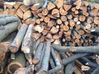 Palivové dřevo :  Kateřinice, dřevo na topení Kateřinice, štípané dřevo Kateřinice