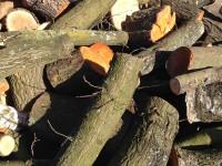 Palivové dřevo :  Jakubčovice nad Odrou, dřevo na topení Jakubčovice nad Odrou, štípané dřevo Jakubčovice nad Odrou