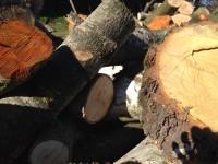 Palivové dřevo :  Heřmánky, dřevo na topení Heřmánky, štípané dřevo Heřmánky
