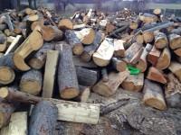 Palivové dřevo Bravantice, dřevo na topení Bravantice, štípané dřevo Bravantice
