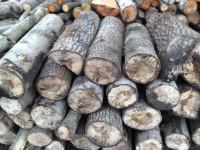 Palivové dřevo Ropice, dřevo na topení Ropice, štípané dřevo Ropice